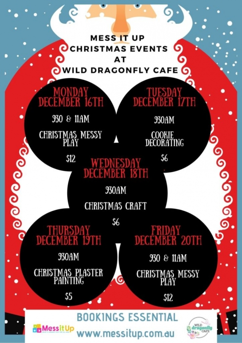 Wild Dragonfly christmas sessions mess it up